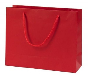 goodie-bag-large