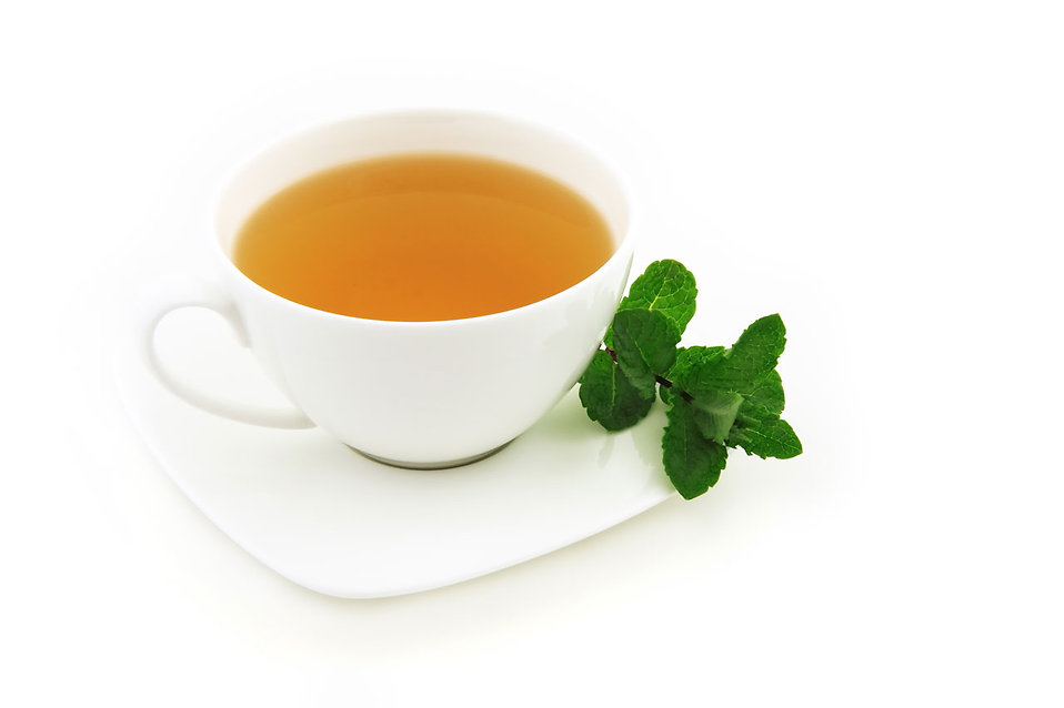 9514-a-cup-of-mint-tea-on-a-white-background-pv