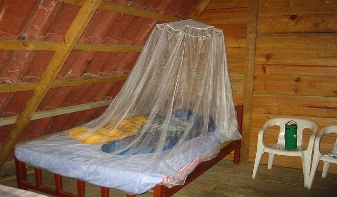 No mosquito net, no wedding – Sokoto government warns