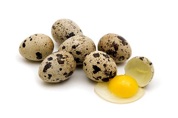 Quail-Eggs